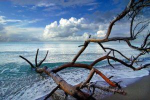 Agfriturismo Alberese i colori del mare