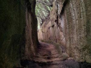 agriturismo-alberese-via-cava-4